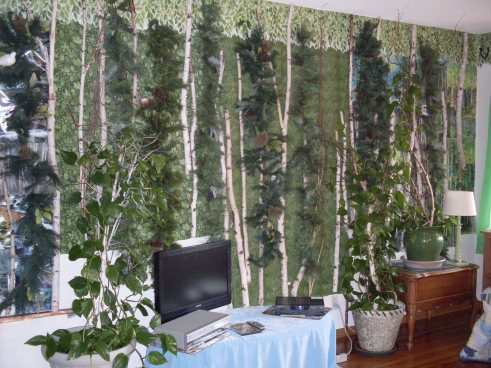 plant-wall-in-living-room-mixed-white-birch-coniferous-forest-dr-melanie-renfrew
