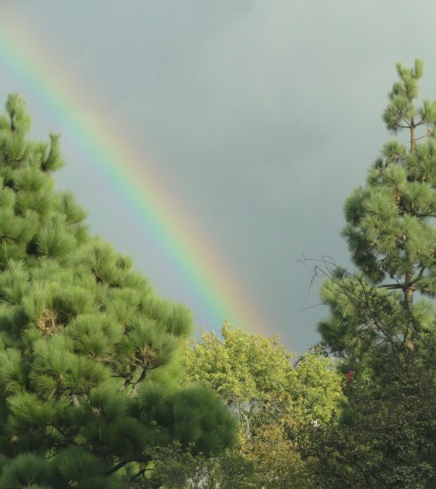 The Covenant - Rainbow over Wilmington from PCH, 10-11-12 MP Renfrew