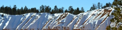 cropped-snow-rust-pines-bryce-1-31-131.jpg