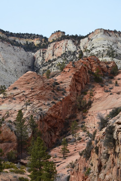 Cut block ridge, Zion, Utah 2-2-13 Dr. M P Renfrew