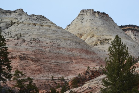 rounded tops Zion, Utah 2-2-13 Dr. M P Renfrew