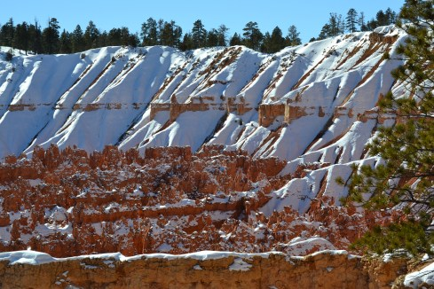 Snow, rust, pines Bryce 1-31-13