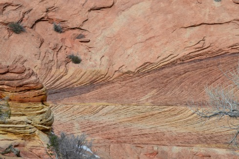 Zion stratifications, Dr. M. P. Renfrew, 2-2-13