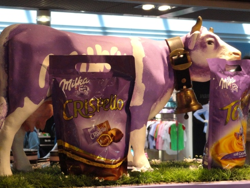Dairy cow turned into chocolate