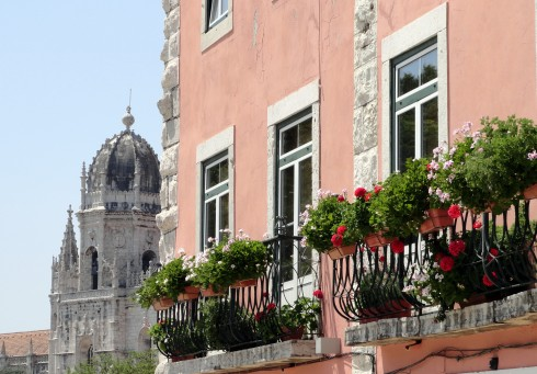 Flower box geraniums on pink building, Lisbon, MP Renfrew