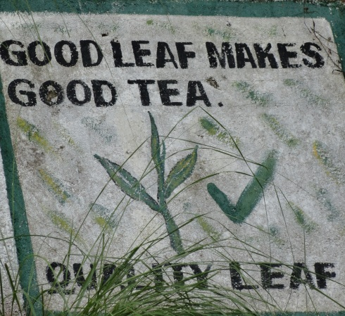 'Good leaf makes good tea' sign