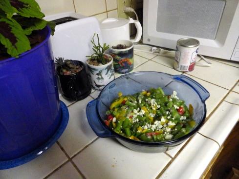 variations sur casserole de haricots verts, MP Renfrew