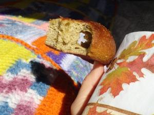 yeast hole in pumpkin bagel, MPR