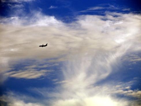 Melanie Renfrew's 1-19-14 jet, cirrus streaks