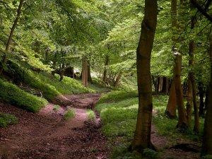 ashridge locationset.co.uk