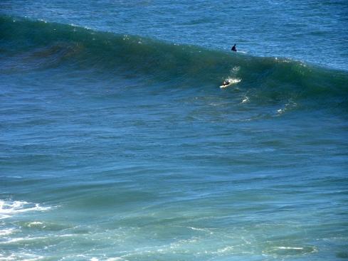 Surfer off San Pedro, 8-27-14, MP Renfrew