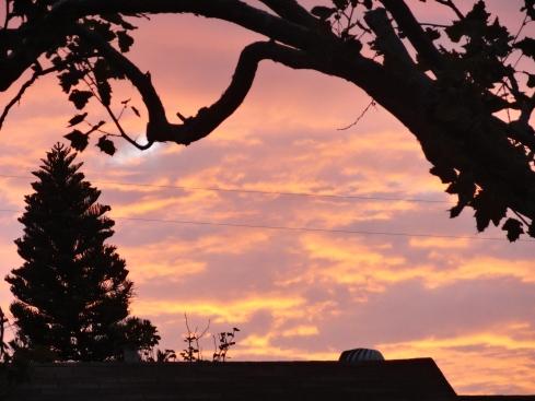 Sept. 2014 Gardena sky, MP Renfrew