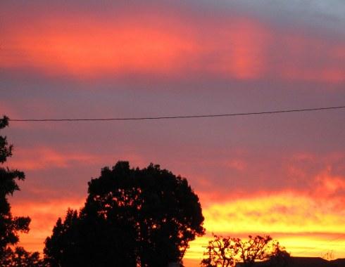 sunrise Gardena 1-18-15 MP Renfrew