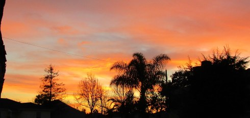 Sunset 1-18-15 MP Renfrew