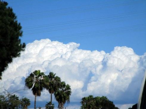 Cumulus congestus 2-23-15 MP Renfrew