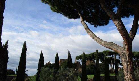 Rome sky 6, 1-22-15 MP Renfrew