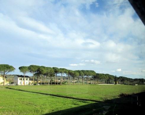 Tuscan farmscape, 1-23-15 MP Renfrew
