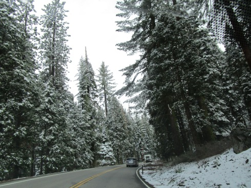 HWY 41 going into Yosemite MMPRenfrew, 4-6-15