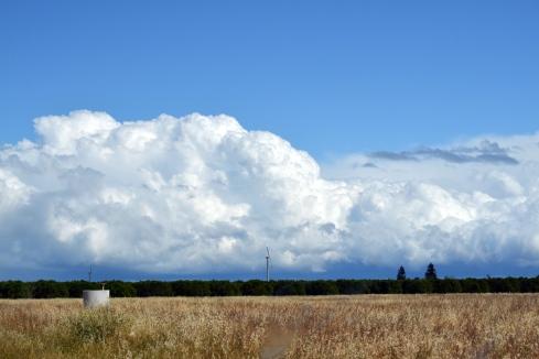 Rain for Central Valley 4-7-15 MMP Renfrew