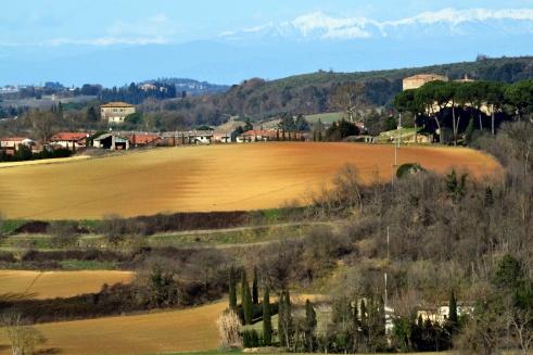 Tuscany near Monteriggioni, San Gimignano Jan. 2015 MMP Renfrew