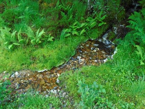 Drainage to Callop RIver, Loch Shiel, Glenfinnan, MP Renfrew