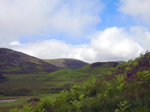 MacPherson turf, glen hike Newtonmore, MP Renfrew
