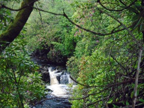 Waterfall on 'burn' Glenfinnan, MP Renfrew 2
