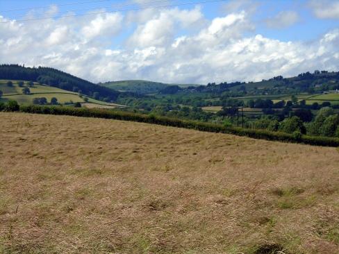Brecon fallow field, MP Renfrew