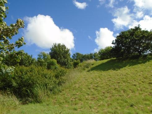 Brecon grassy hill, MP Renfrew