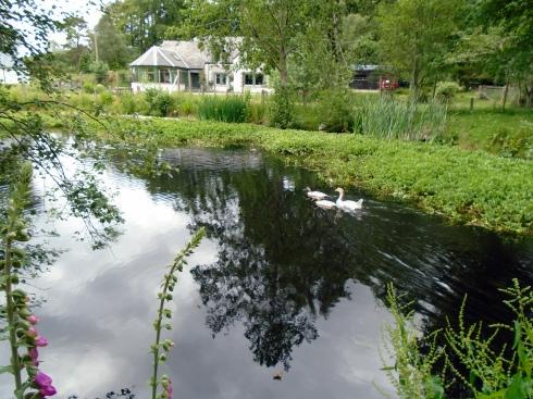 Glentruim pond