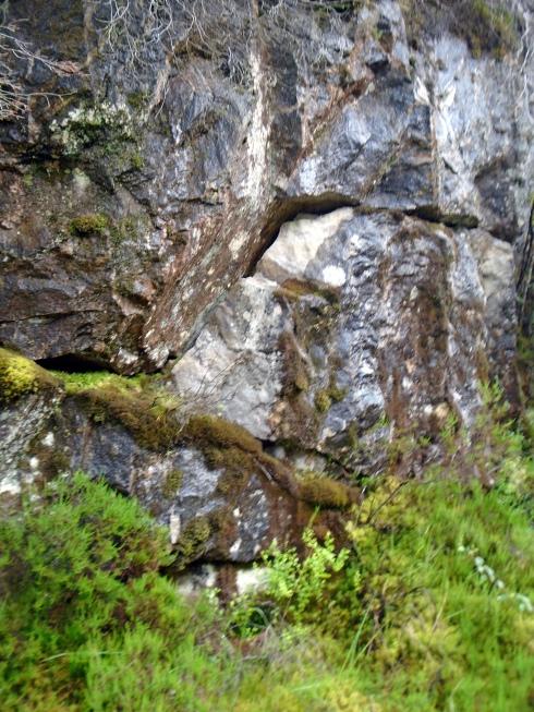 Gneiss, igneous intrusion, Loch view trail , MP Renfrew