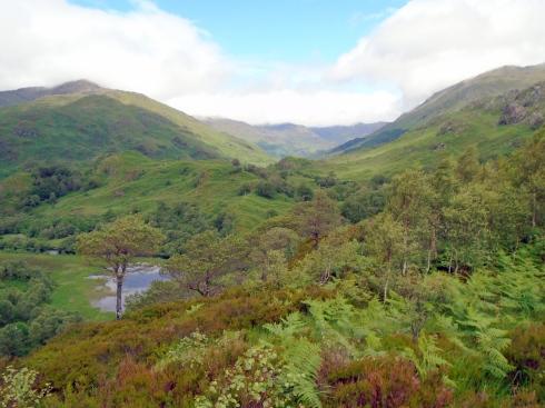 Hills above Glenfinnan viaduct, Loch view trail , MP Renfrew