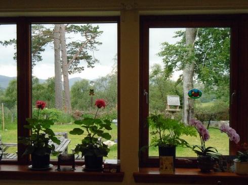 Jo's geraniums, Glentruim