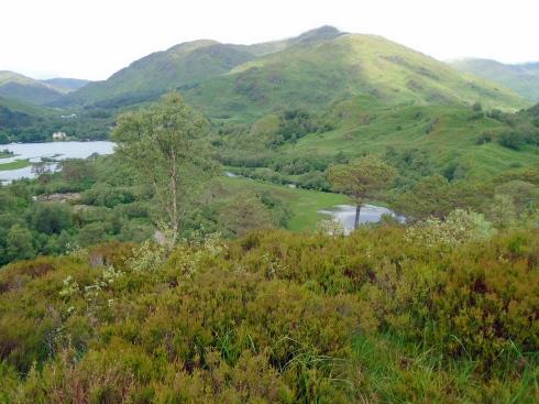 Loch Shiel view trail , MP Renfrew