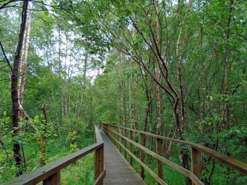 Loch View Trail, Glenfinnan 1 MP Renfrew