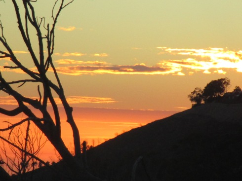 Cren. sunset MP Renfrew 9-13-15 1