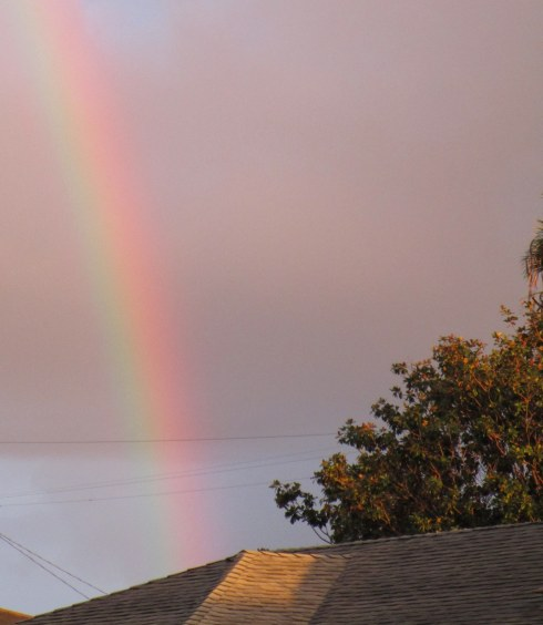 rainbow over Brenda's house
