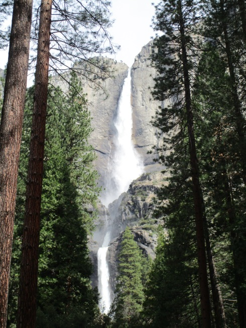 Yosemite Falls 4-16 MP Renfrew