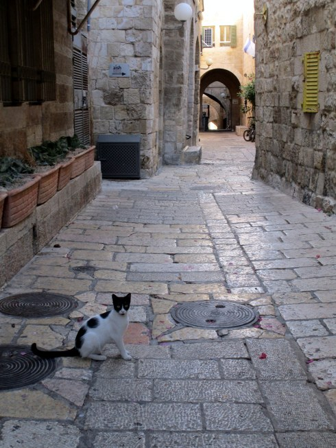 Empty Old City Jerusalem, Fri. 4 p.m. 6-23-16 MP Renfrew 2, cat