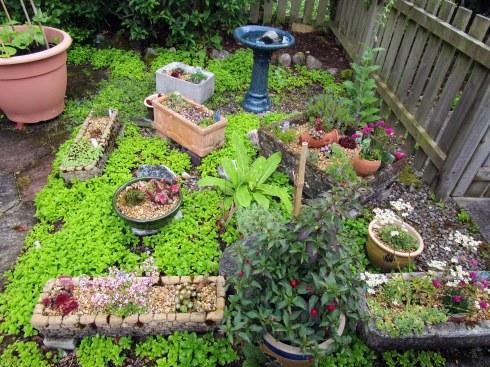 Inverness garden 2, MP Renfrew 6-16