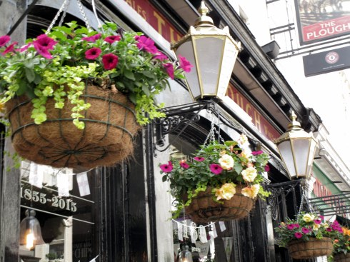 Plough Pub hanging baskets, London, MP Renfrew 6-16