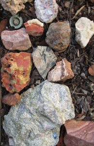 collected-rocks-mp-renfrew