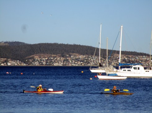 kayakers-hobart-1-17-mp-renfrew