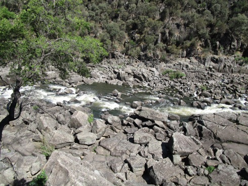 launceston-gorge-6-mp-renfrew