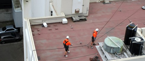 wellington-construction-guys-rappelling-mp-renfrew-1