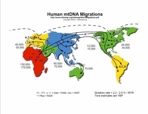 mtdna-migration-pattern-world-map